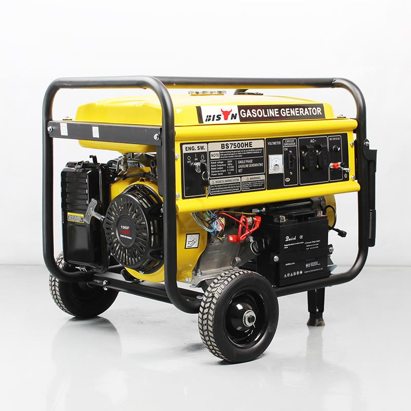 5000 Watt Portable Power Generator RV