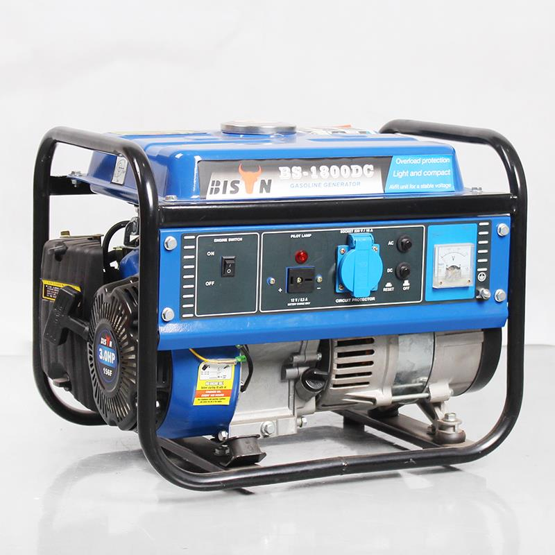 Portable 1000 Watt Generator for Home Use